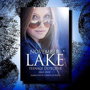 November Lake: Teenage Detective Audiobook By Jamie Drew cover art