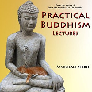 Practical Buddhism Lectures Audiobook By Marshall Stern cover art
