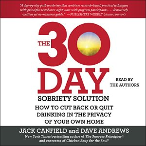 The 30-Day Sobriety Solution Audiobook By Jack Canfield, Dave Andrews cover art
