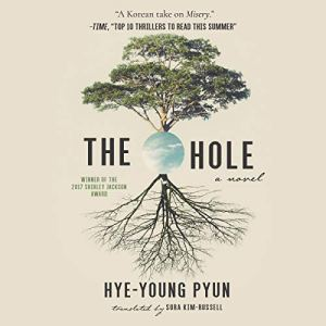 The Hole Audiobook By Hye-Young Pyun, Sora Kim-Russell - translator cover art