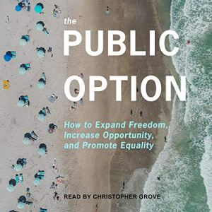 The Public Option Audiobook By Ganesh Sitaraman, Anne L. Alstott cover art