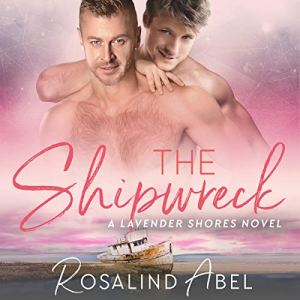 The Shipwreck Audiobook By Rosalind Abel cover art