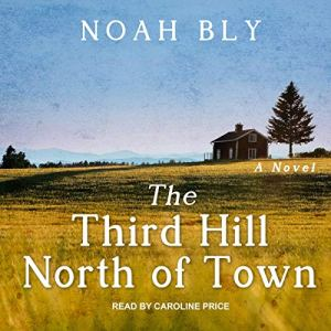 The Third Hill North of Town Audiobook By Noah Bly cover art