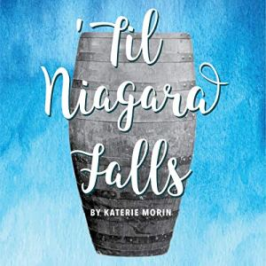 'Til Niagara Falls Audiobook By Katerie Morin cover art