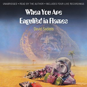 When You Are Engulfed in Flames Audiobook By David Sedaris cover art