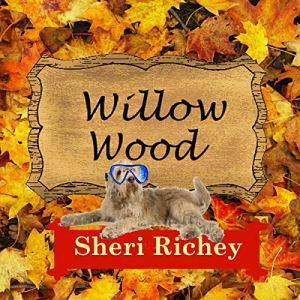 Willow Wood: A Sweet Small Town Romance Audiobook By Sheri Richey cover art