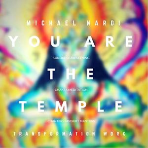 You are the Temple Audiobook By Michael Nardi cover art