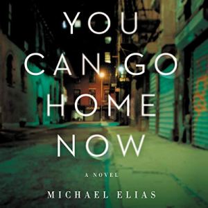 You Can Go Home Now Audiobook By Michael Elias cover art