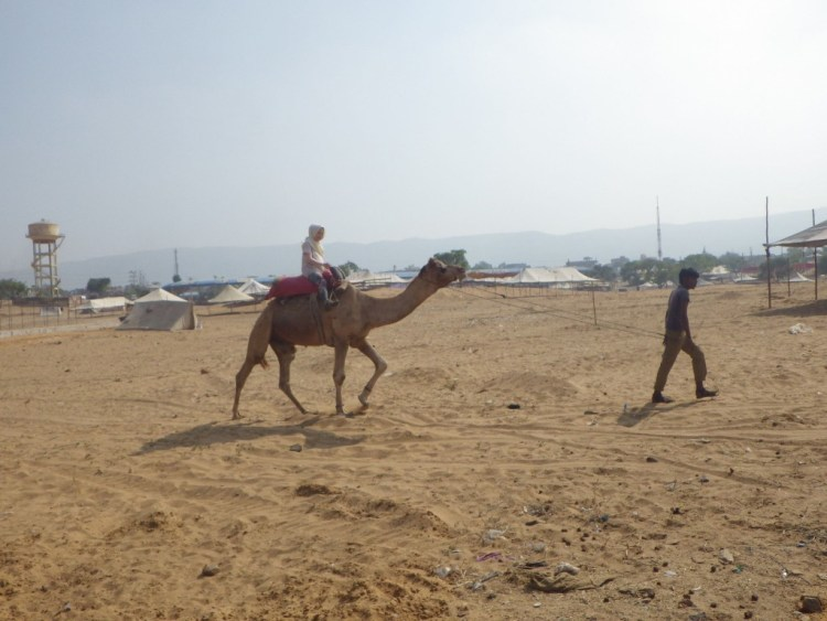 camel practice