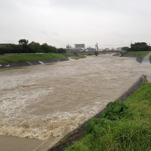 芥川が危ない!台風11号の影響で水が溢れています。