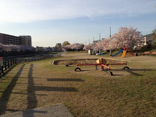 桜堤公園の遊具