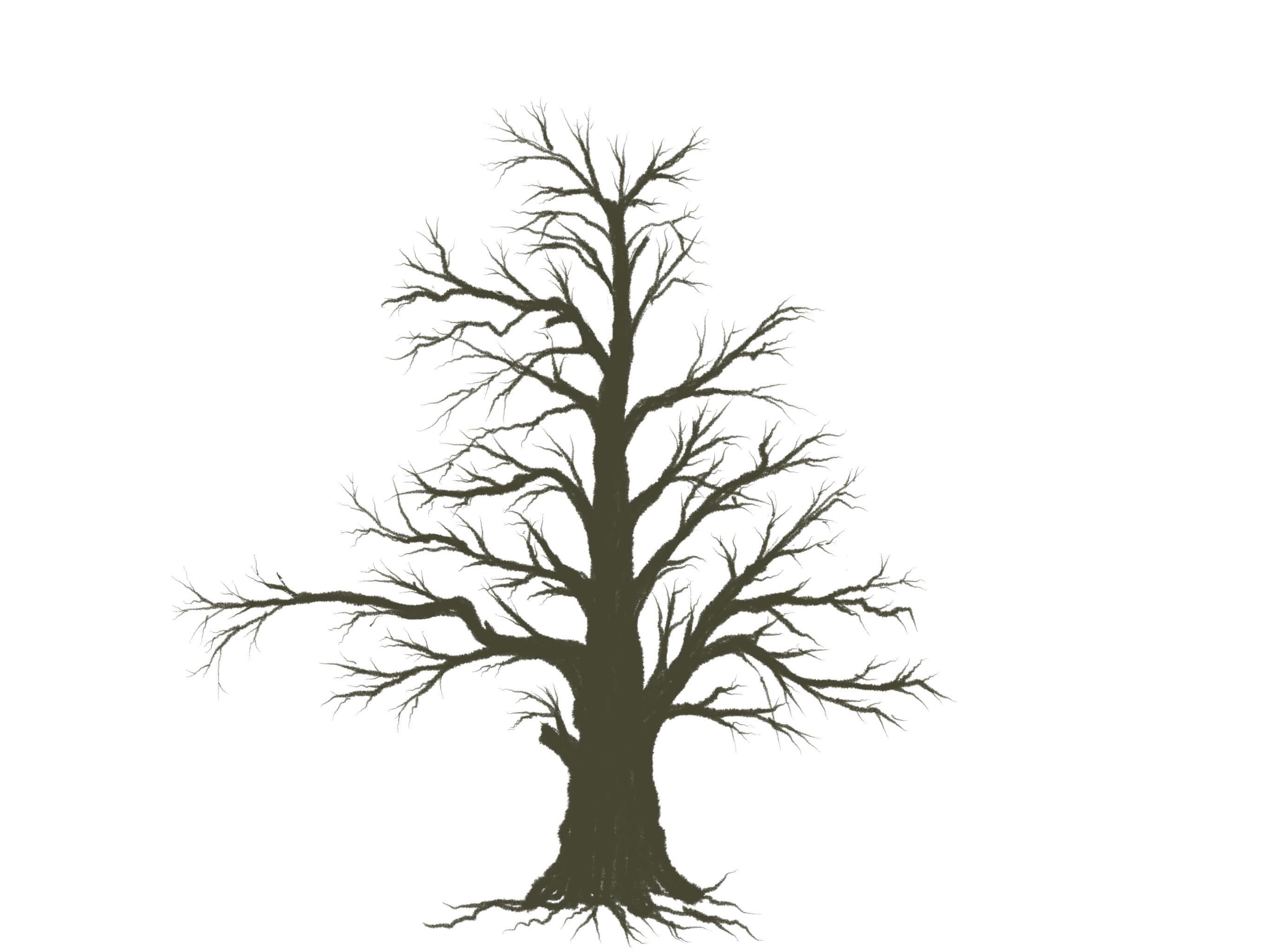 木の描き方下描き不要バランスの良い木がサクッと描けてしまう枝ぶり