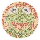 【色覚テスト 幼児用】絵や図形を使った色覚検査表を集めました。 | 今日もプチ感動!