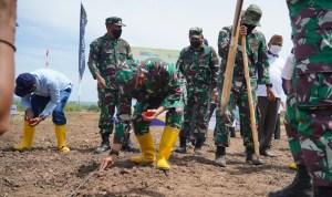 Danrem 011/Lilawangsa Kolonel Inf Sumirating Baskoro saat menanam jagung. Foto: Istimewa
