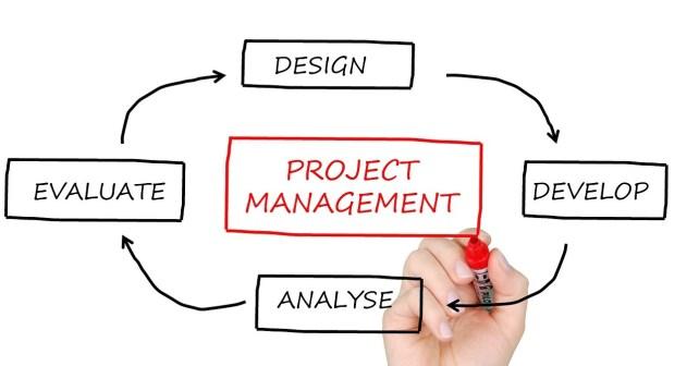 start web project