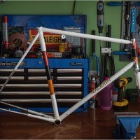 Worksop Carlton Raleigh - Giro D'Italia? Carlton BMB Team? MK 1 Raleigh Professional?
