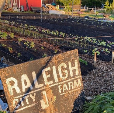 raleigh city farm