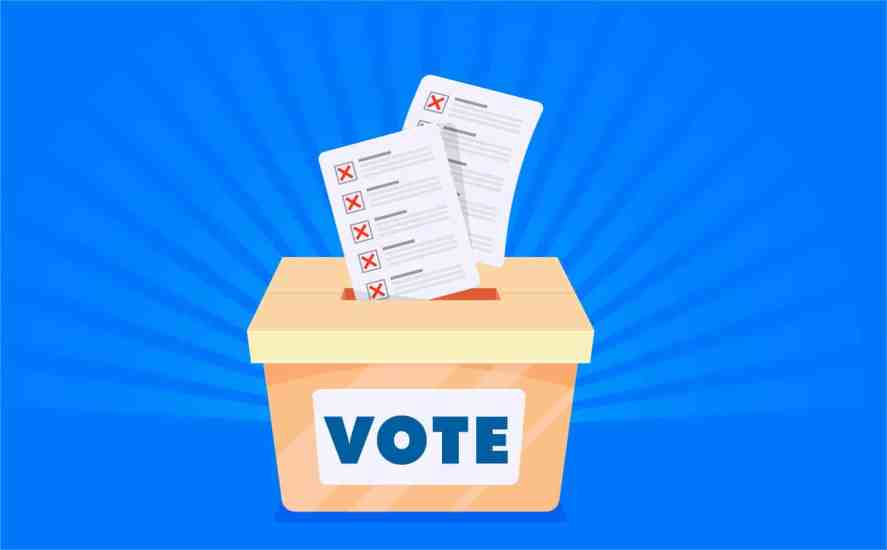 Raleigh voting
