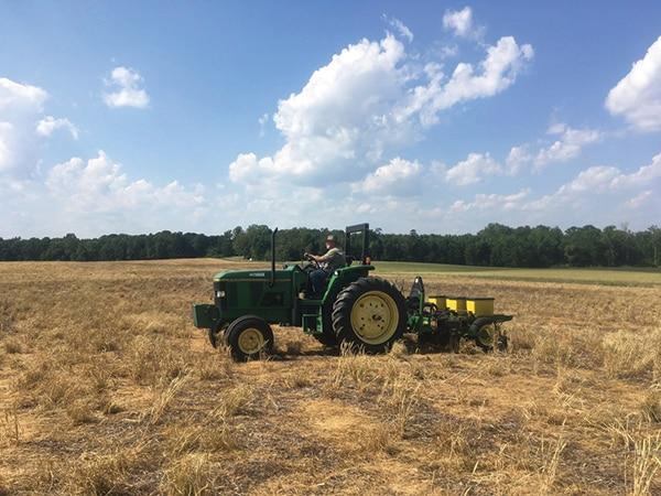 Cox Brothers Farm in Monroe, NC