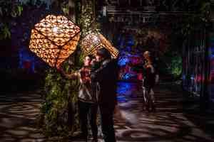 Moonlight in the Garden (Preview Night) @ JC Raulston Arboretum | Raleigh | North Carolina | United States