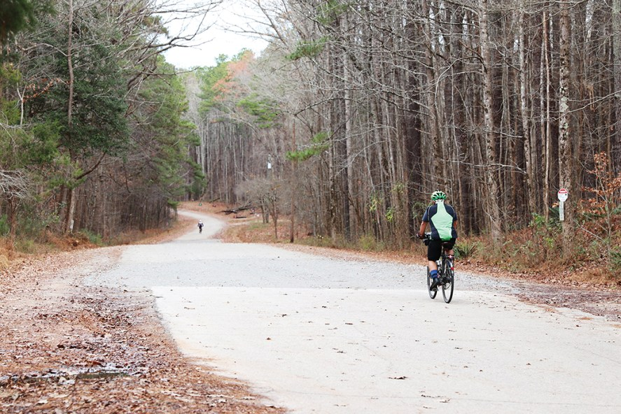 Umstead State Park | Photo courtesy of RDU Forest