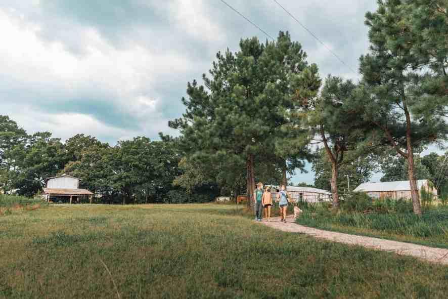 Walnut Hill Way Trail Williamson Preserve Land Ltd