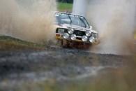 Audi Sport quattro S1 ERF (5)