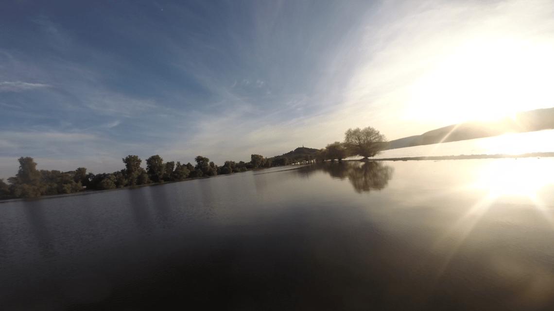 Stand-Up-Paddling auf dem Rhein (SUP)