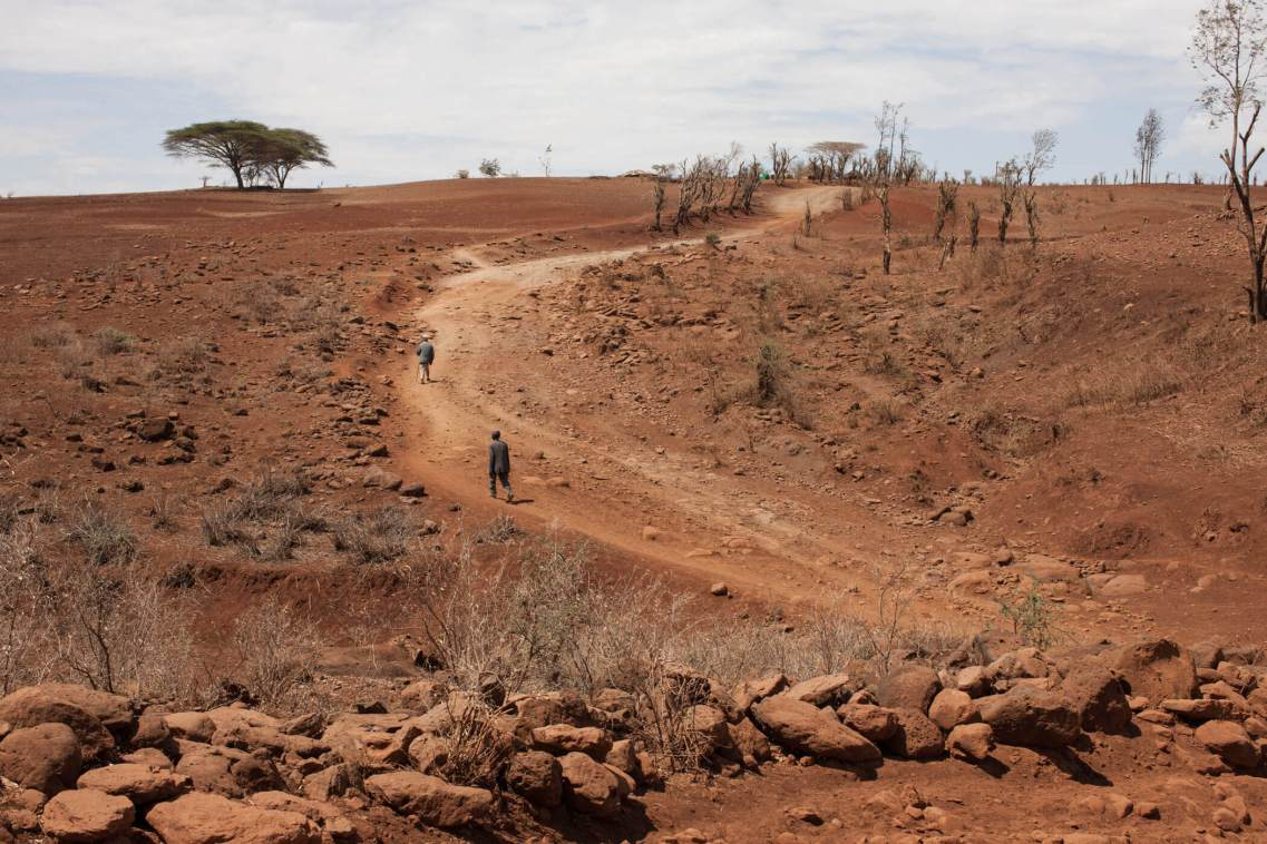 Drought-torn landscape, Northern Kenya.