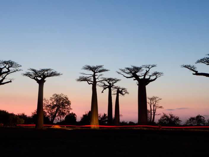 Madagascar Landscapes