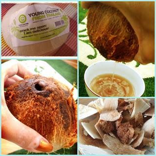 Etape ale obtinerii laptelui de cocos