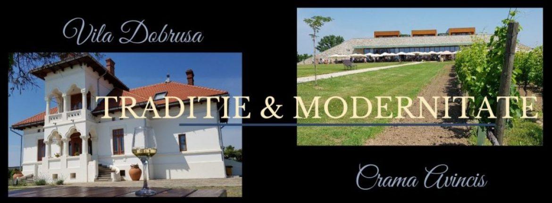 Traditie si modernitate la Vila Dobrusa