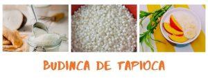 BUDINCA DE TAPIOCA