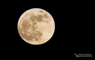 Super Moon 2012- Mircea Costina