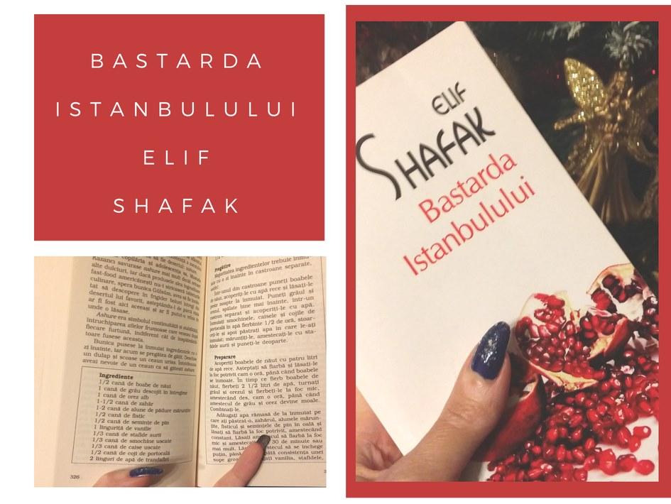 Bastarda Istanbulului de Elif Shafak - review