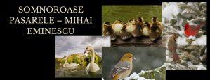 Somnoroase pasarele – Mihai Eminescu