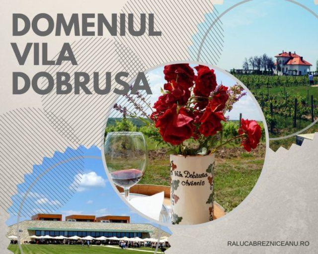 Amprente de viata la Vila Dobrusa