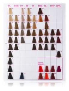 Kallos KJMN culori de vopsea de par