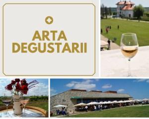 arta degustarii la Vila Dobrusa