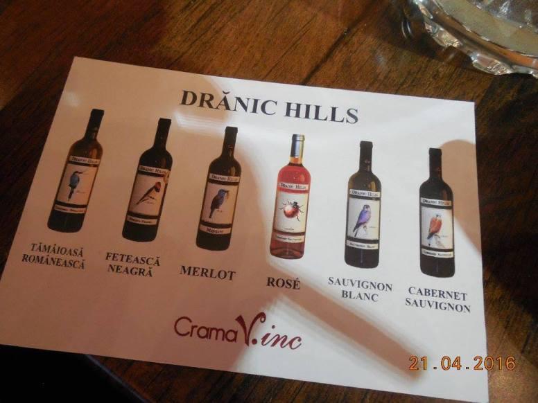 Degustare Delaco si vinuri de la V.inc. 7