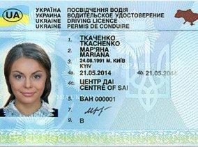 Права нового образца получат украинские водители | Панорама