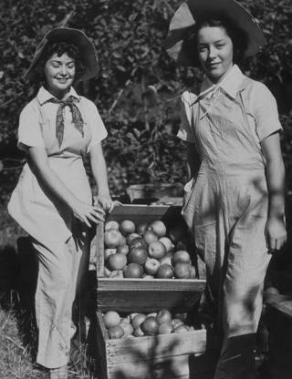 photograph of two women with boxes of apples