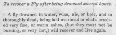 To recover a Fly after being drowned several hours. From The Young Man's Book of Amusement (1854)