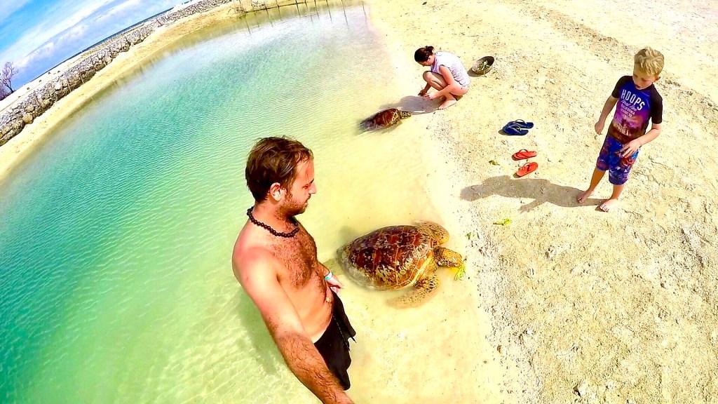 Turtle Bay - Vanuatu
