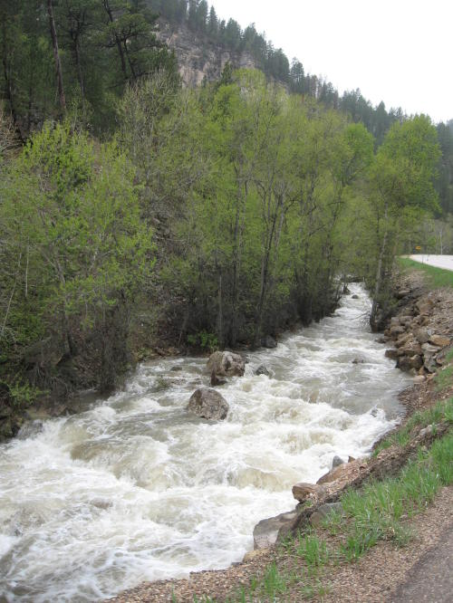 spearfishcanyon4