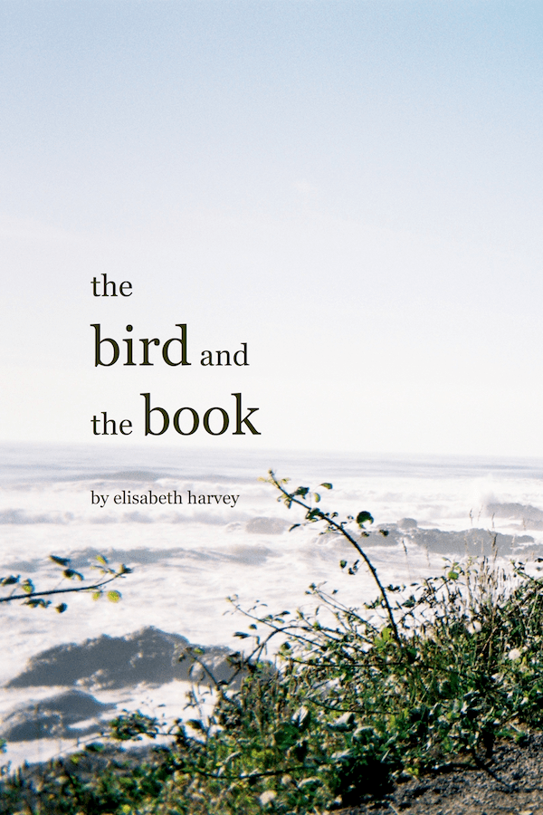 Cover art for The Bird and the Book by Elisabeth Carol Harvey McCumber