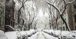 I Do Not Like Chicago Snow