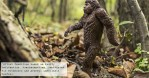 Five Probable Reasons Why Human Society Will Never Find Bigfoot