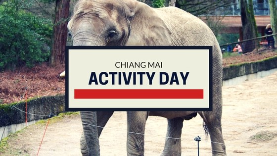 Activity Day Trip Chiang Mai