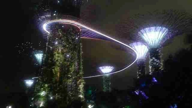 Visiting Gardens of the Bay in Singapore